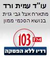 עורך דין הסכם ממון עמית ורד ריאיון ברדיו 103